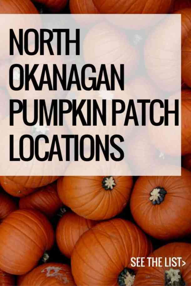 North Okanagan Pumpkin Patch Locations   Home for the Harvest