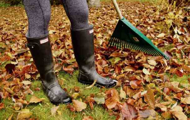 Getting the Garden Ready for Winter | Home for the Harvest