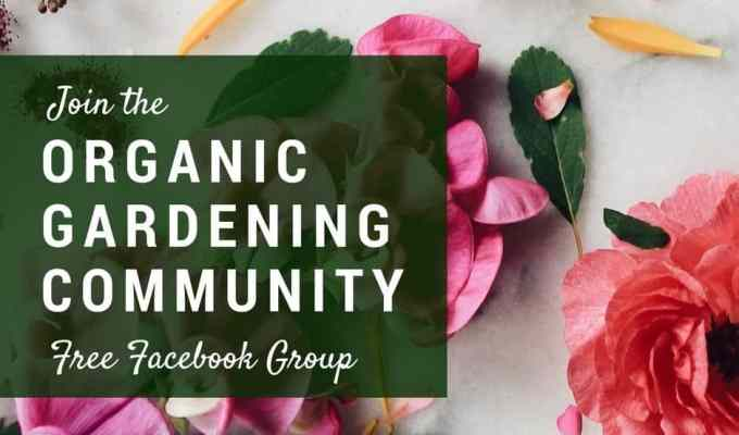Introducing the Organic Gardening Community Group