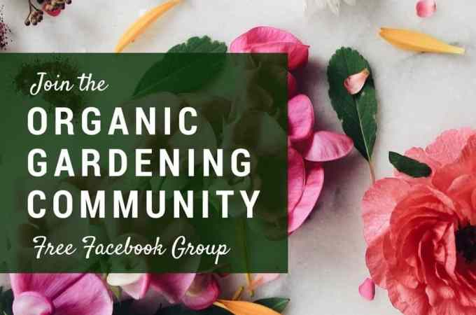 Organic Gardening Community - A Free Facebook Group for New and Experienced Gardeners   Home for the Harvest