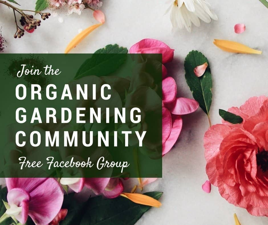 Organic Gardening Community   A Free Facebook Group For New And Experienced  Gardeners | Home For