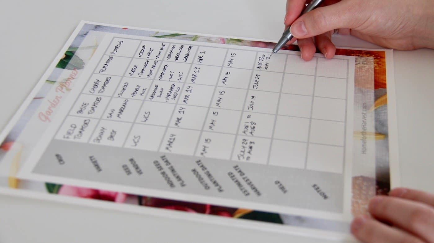 Create a Planting Calendar: How to Make an Easy Garden Schedule