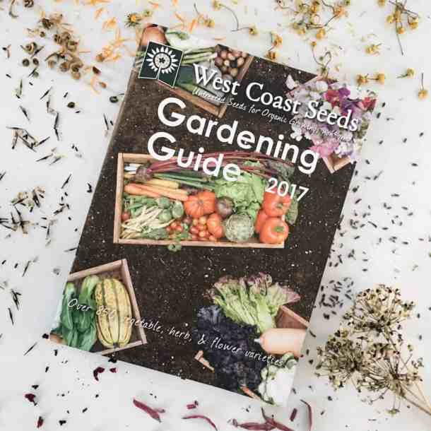 How to Shop for Seeds and Crops to Grow in Your Garden | Home for the Harvest