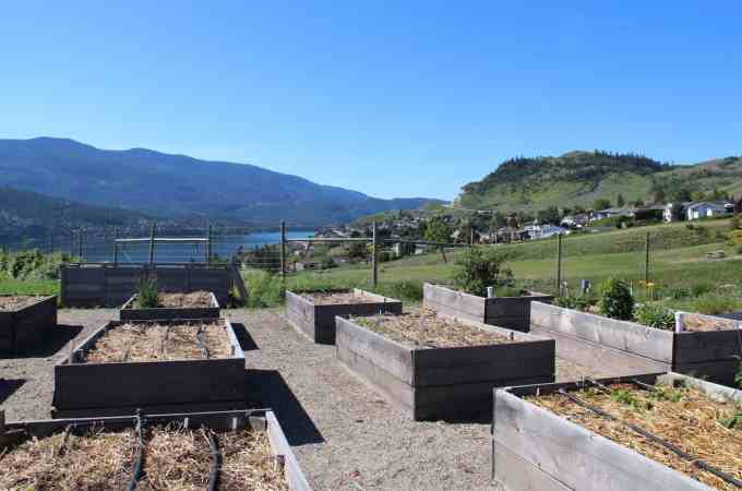 Raised Bed Garden - The Best Types of Gardens   Home for the Harvest