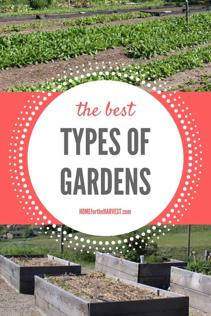 Types Of Wine Bottles Infographic: The Best Types Of Gardens, And Which One Is Right For You