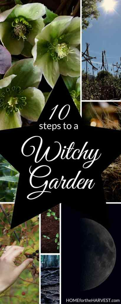 composite image showing witchy hellebore flowers, the moon, and images a witch garden with text - 10 Steps to a Witchy Garden