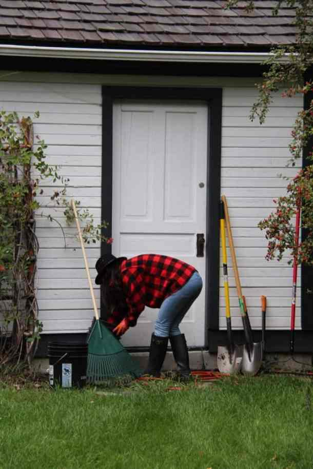 How to Start a Garden - Harvest Season Garden Clean-Up   Home for the Harvest