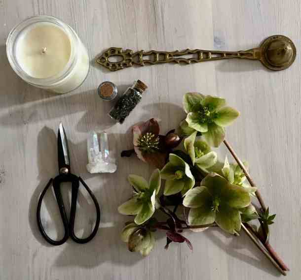 hellebore flowers from a witch garden along with a quartz crystal, soy candle, scissors, and dried nettles