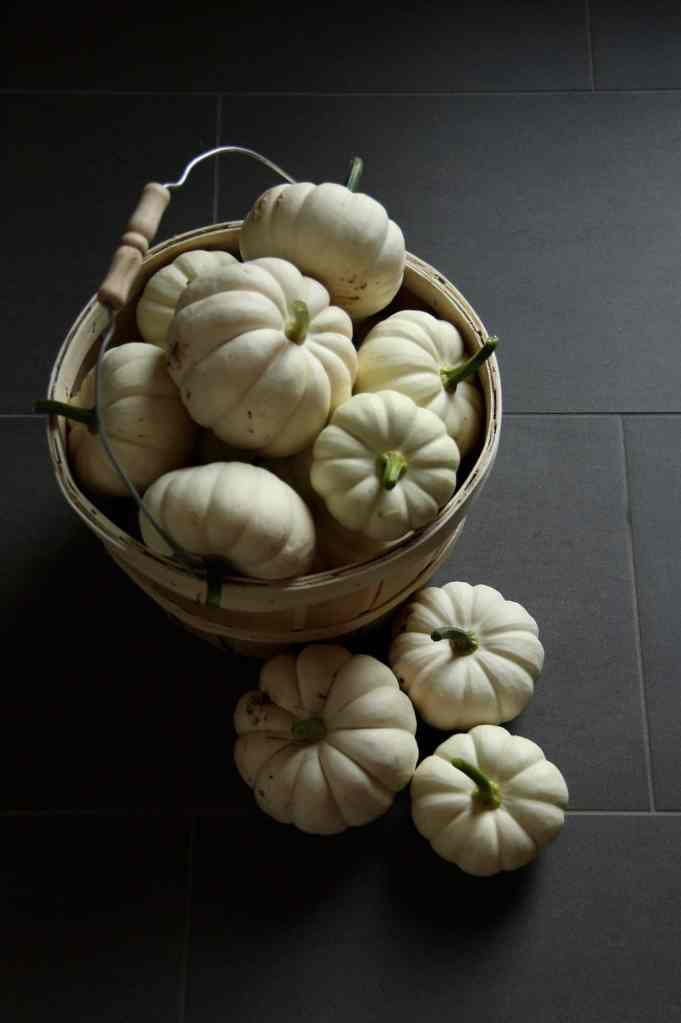 How to Grow Organic Pumpkins