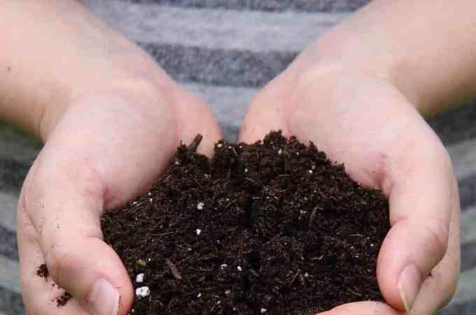 Types of Soil for Organic Gardening Explained | HomefortheHarvest #SoilTypes #TypesofSoil #OrganicGardening #Gardening #HealthySoil #LearntoGarden