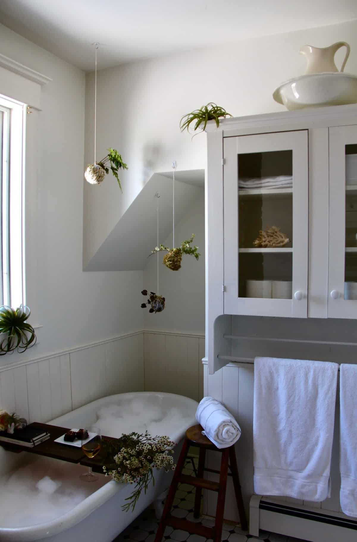 White clawfoot bathtub full of bubbles surrounded by houseplants and treats