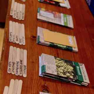 these seeds for sale online are organized in similar groupings on a wooden table