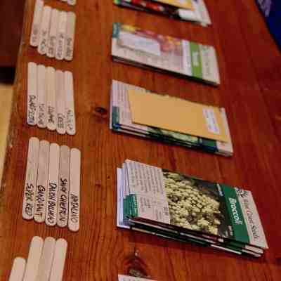 Types of Seeds: Explaining Open-Pollinated, Heirloom, Organic, Hybrid, & Non-GMO Seeds