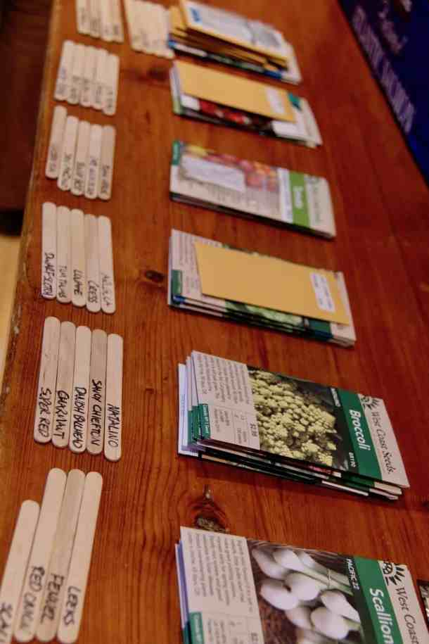 non gmo seeds for sale organized on a wooden countertop in similar groupings such as vegetable seeds, herb seeds, and flower seeds