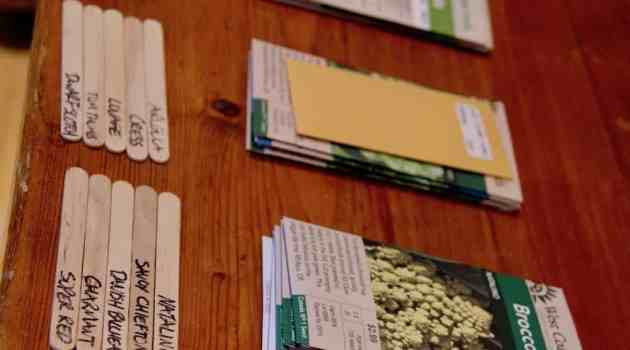 different types of seeds on farmhouse table
