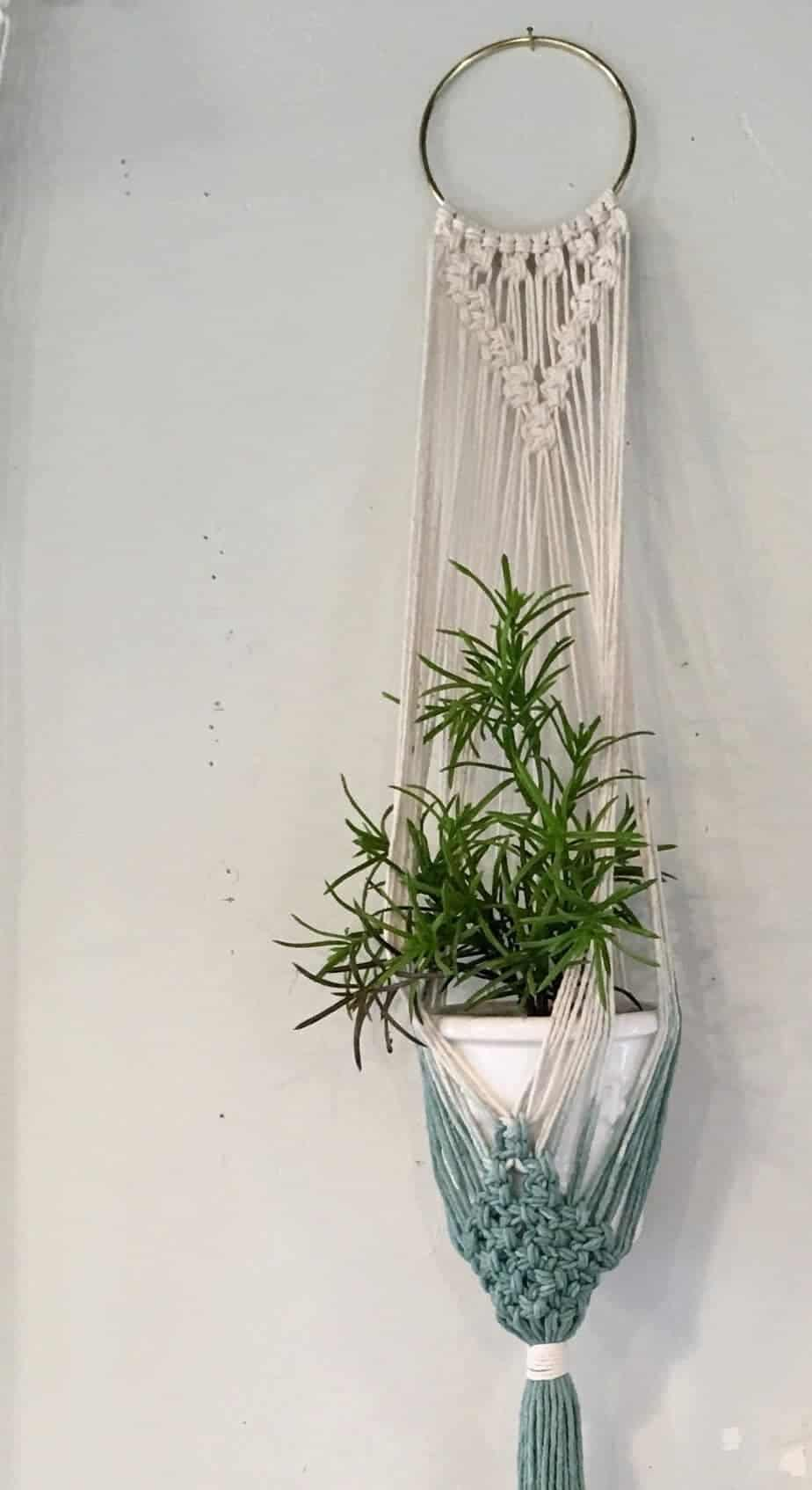 10 Hanging Plants and Ideas for Hanging Planters You'll ... on Plant Hanging Ideas  id=39231