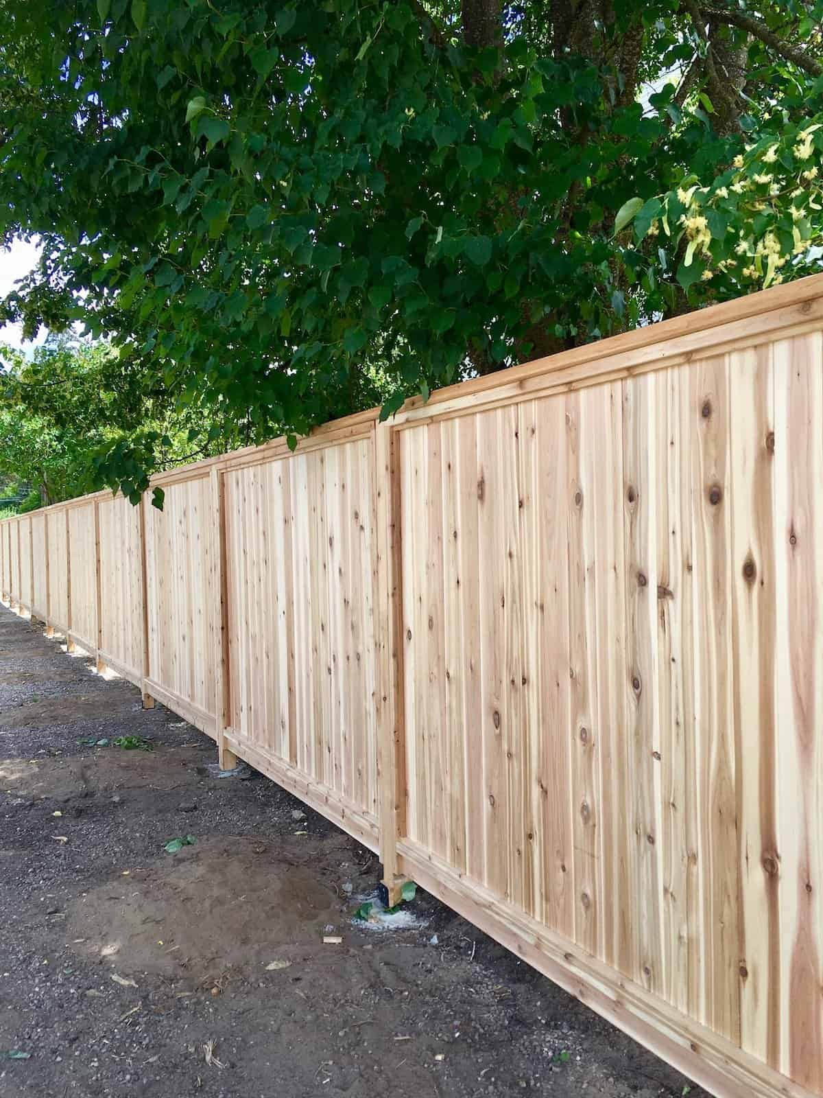 Privacy Fence: Using Wood Fence Panels To Create Privacy ... on Decorations For Privacy Fence id=20682