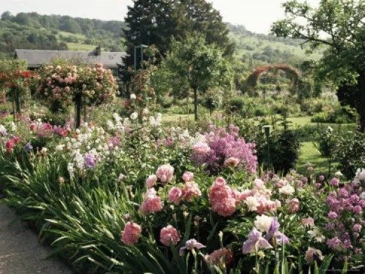 Tender pinks and blues makes a June border sing