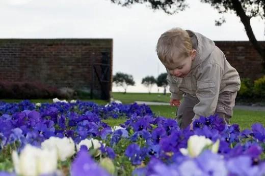 Child's spring day in the garden