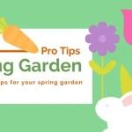 10 Useful Gardening Tips For Spring