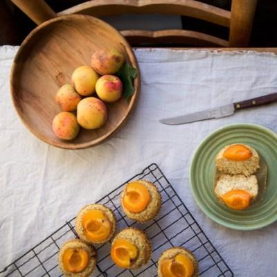LITTLE APRICOT CAKES + Sourdough Variation