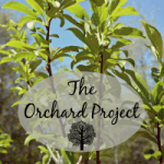 Our Big Buy & The Orchard Project