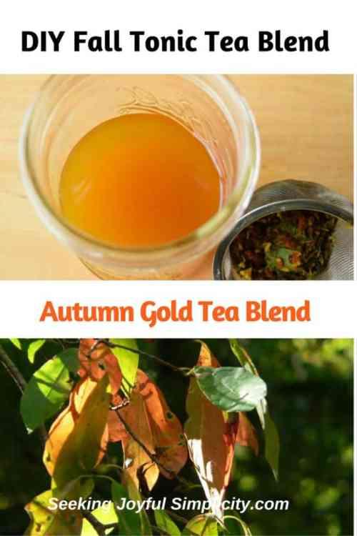 autumn-gold-tea