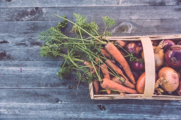Self-reliance - Grow your own!