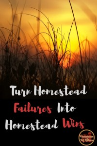 What to do when you feel like a FAILURE on the Homestead - turning homestead fails into homestead wins! It can be very discouraging when it feels like nothing is going your way on your homestead. Here are some ways to overcome that feeling