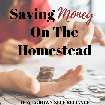 Lady Counting Change - Saving Money On The Homestead