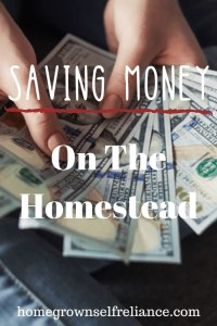 Person holding money - Saving money on the homestead