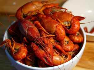 Crawfish Festival @  Clinton Square | Syracuse | New York | United States