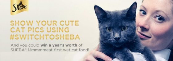 Your Cat Deserves Meat and No Fillers! #SwitchToSHEBA