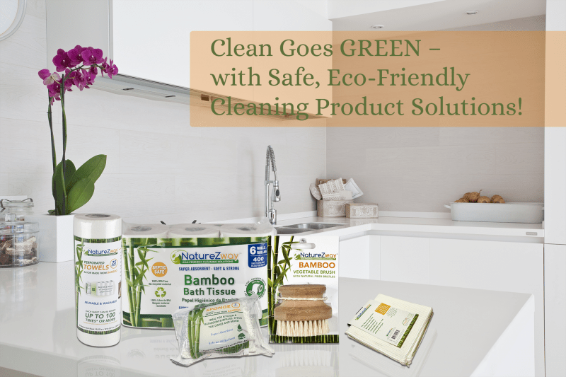 4 Eco-Friendly Swaps for a More Green Home #NatureZway #NatureZwayEco