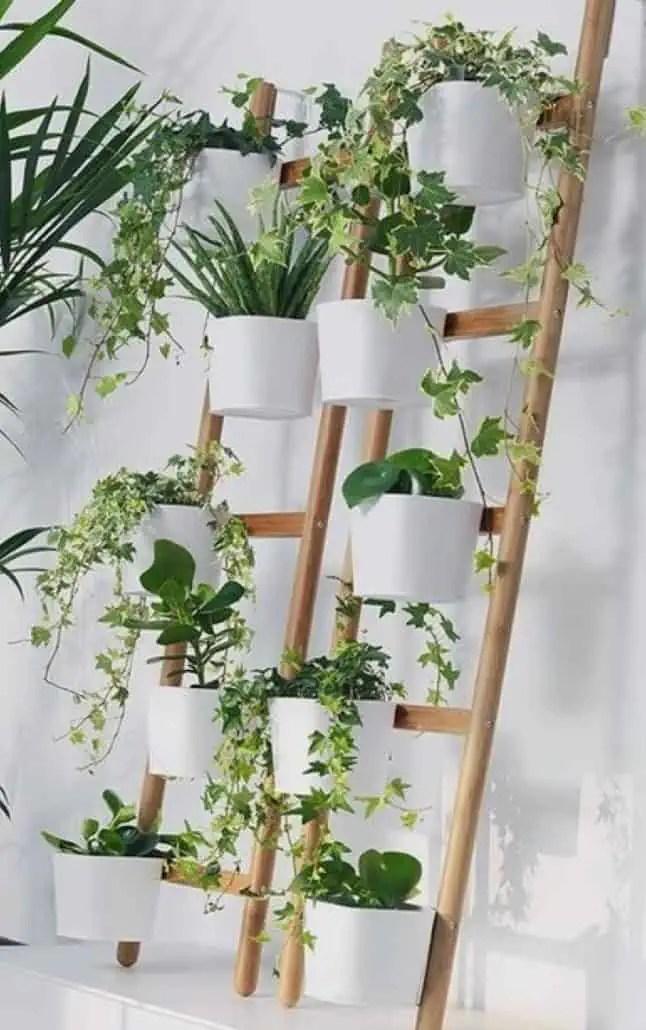 mur vegetal interieur 14 idees