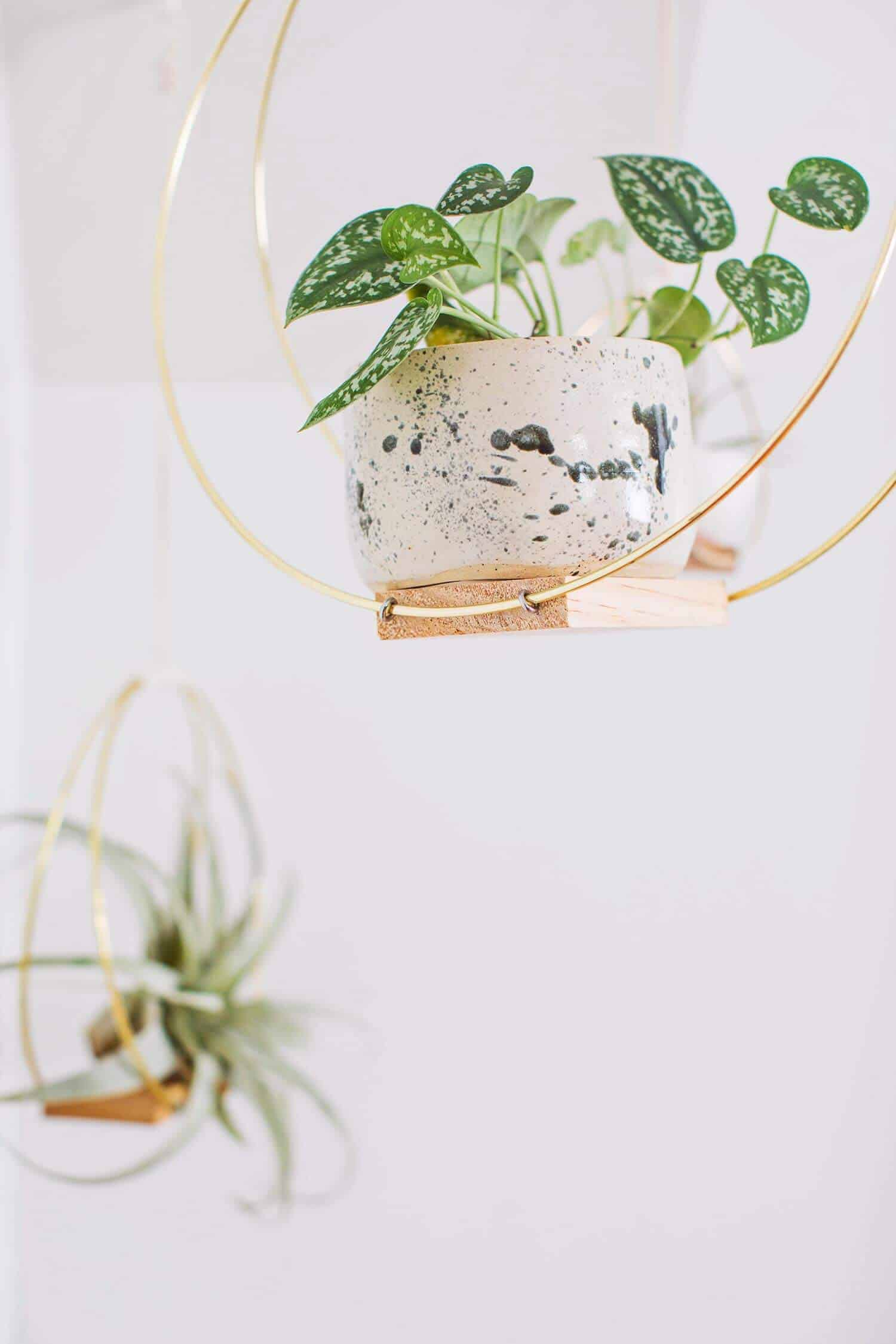 Brass Ring Hanging Planter DIY