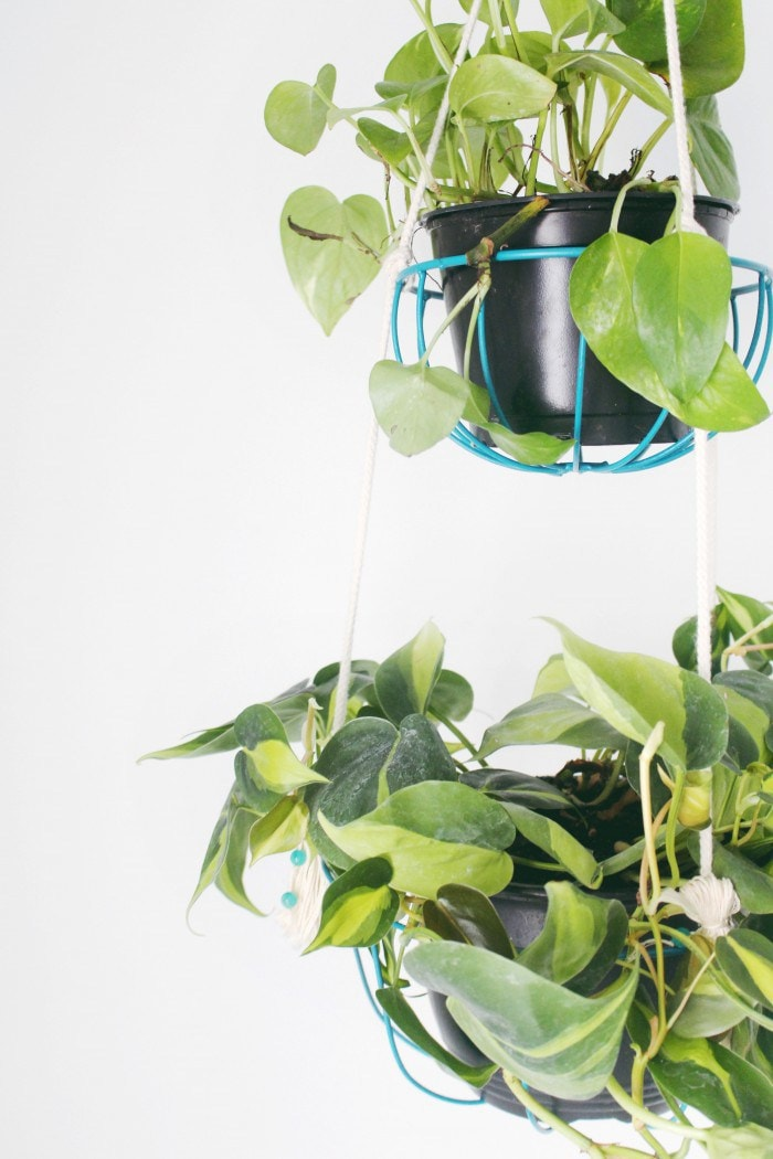DIY Hanging Wire Planters