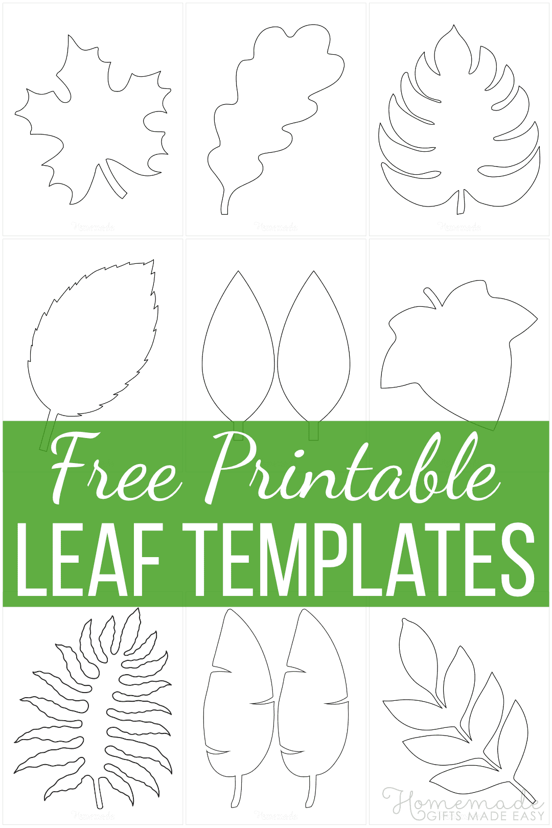 21 Free Leaf Templates Printable Outlines Of Maple Oak Etc For Kids Crafts