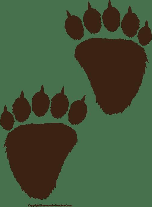 Animal Prints Bear Chart Paw
