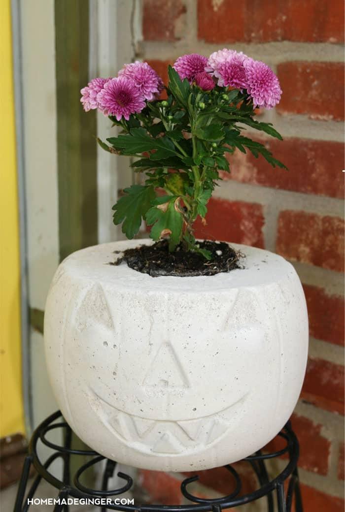 DIY Concrete Pumpkin Planter