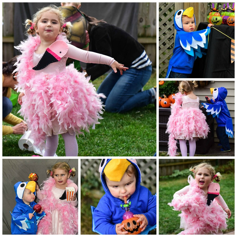 Feathered Friends: Easy DIY Flamingo and Parrot Halloween