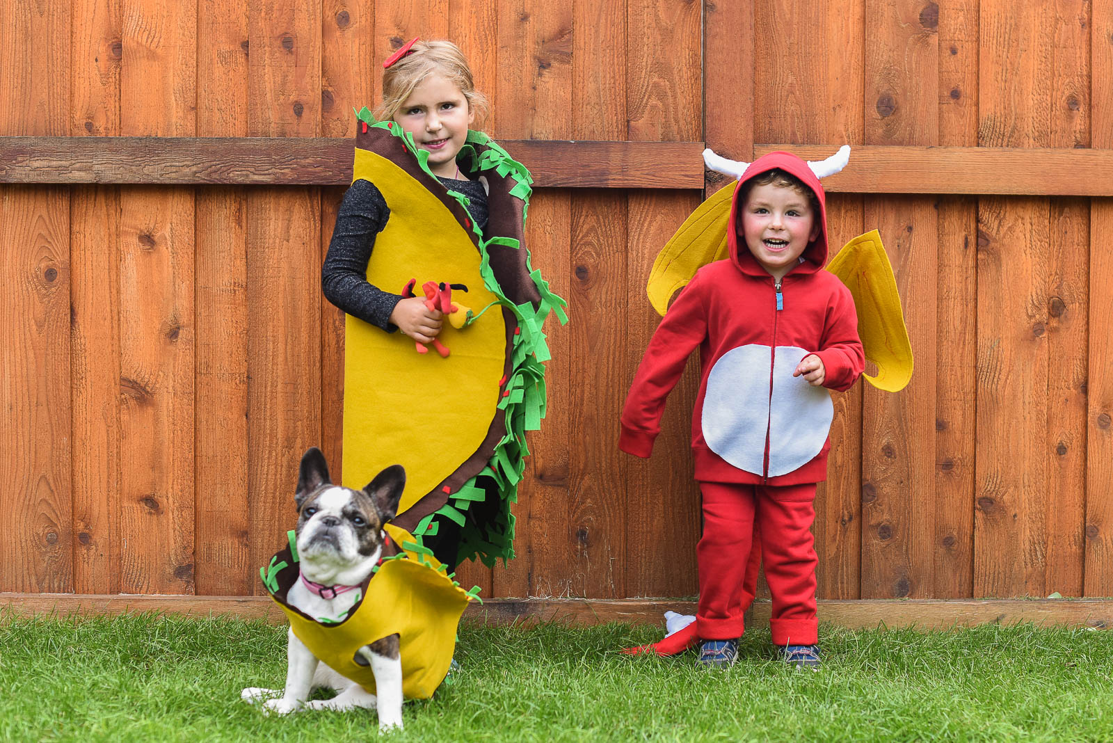 Easy Diy Dragons Love Tacos Costumes For Kids Homemaker S Habitat