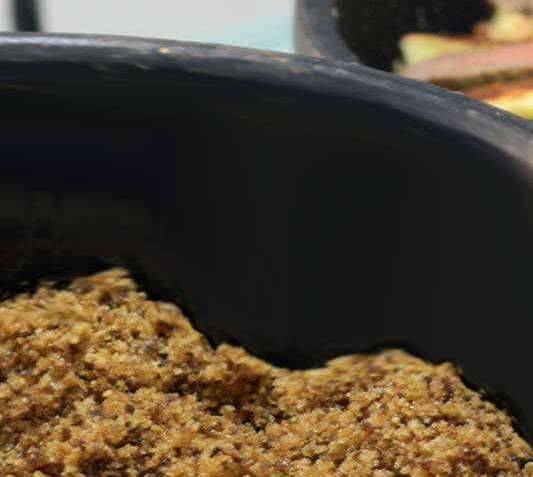 pacoca-carne-de-sol-e-baiao-de-2Pinterest