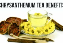 Chrysanthemum tea health benefit