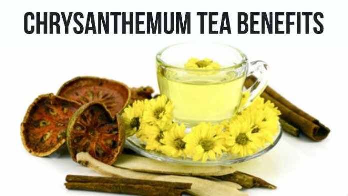 Chrysanthemum tea health benefit