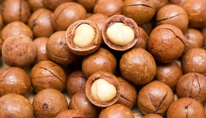 Health benefits of macadamia nut oil