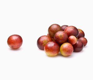 Health benefits of camu camu