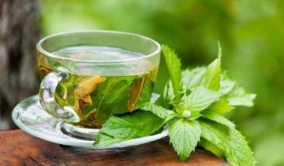 Health benefits of green tea, bone cancer