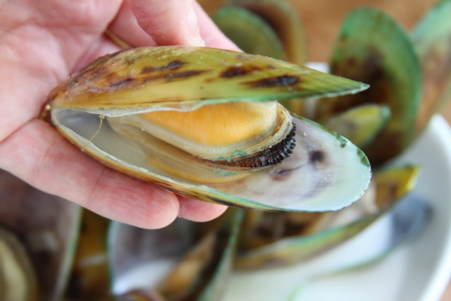 Health benefits of green lipped mussel