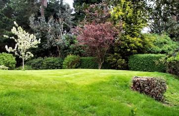 Home of Devenish communal gardens